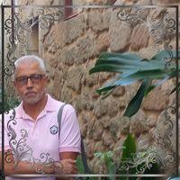 Ver perfil de José Ribeiro