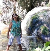 Ver perfil de Idália Ferreira