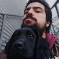 Ver perfil de Pedro Martins